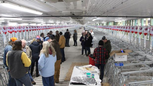 Neighbors and Cass Crest hog barn partners mingled at an open house for the facility held Dec. 16. A steady crowd came by to check out the new facility, which should start feeding hogs in January. (Staples World photo by Mark Anderson)