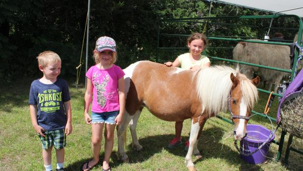 A petting zoo at Scandia Valley's Summerfest was a popular destination for children Aug. 6. Pictured above with a pony are, from left, Graysyn and Sophia Jensen from Hammond, Wisc.; and Kyla Marquart, from the local area. The Jensens were formerly of the Cushing area and their father, Martin Jensen, had been a member of the Scandia Valley Fire Department. (Staples World photo by Dawn Timbs)