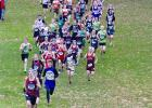 154 runners follow Emmet Anderson down a hill 400 meters into the Section 6A meet. Also visible in the front group are Tanner Robben, Ben Bartczak and Hunter Klimek. In the middle of the pack are Jack Tyrrell, Brayden Christensen and Bentley Christensen. The boys team won the race to advance to state. (Staples World photos by Mark Anderson)