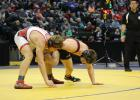With the entire arena watching, Alex Erpelding grabs a leg in the 160 pound championship match at the state wrestling tournament. (Submitted photos)