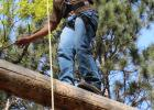 Edward Pappenfuss balances on a log high above the ground at the Camp Shamineau high ropes course. Connections High School students participated in activities at the camp on May 20.